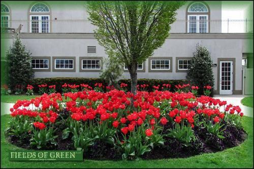 1-The Greens at Half Hollow1804--11